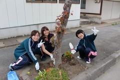 H28年度 松コミ植栽3